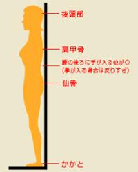 矢状面からの人体図