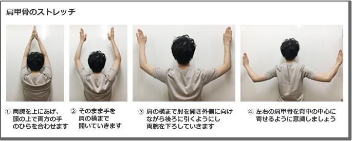 肩甲骨のストレッチ説明